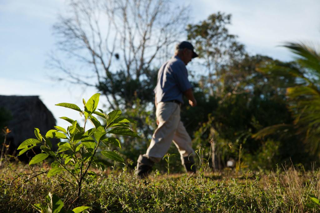 Andar en el bosque es algo que entretiene y no agota a Hoyos.
