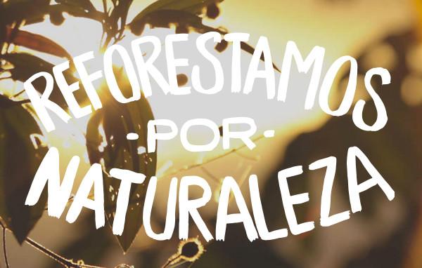 reforestamos