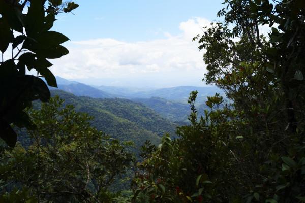 Ruta al Toroyacu