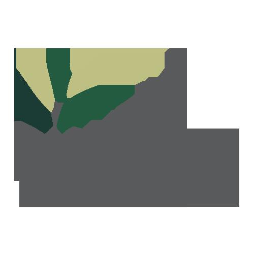 logo-plantique