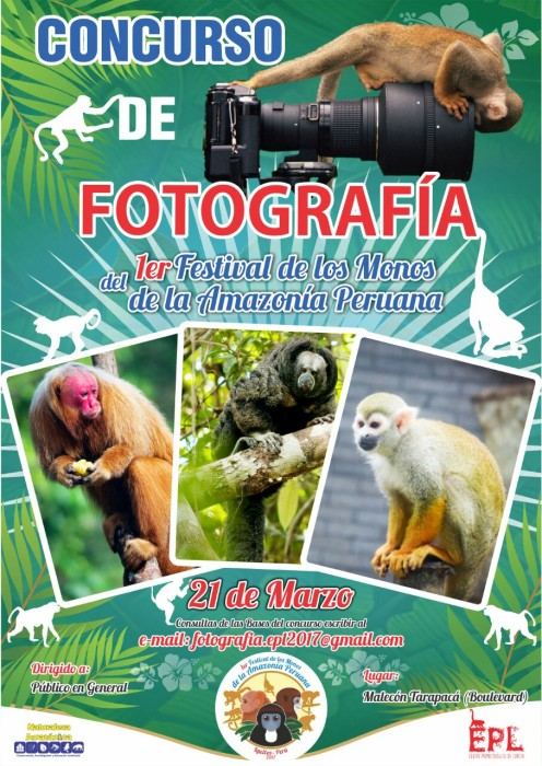 Festival-monos-Amazonia-Peruana (2)